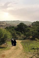 (عفاف المعيوف) Tags: درب طريق غابة خضرة أخوة أخوان
