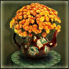 Yellow chrysanthemum (jaci XIII) Tags: flower table flor kettle chrysanthemum mesa chaleira crisantêmo