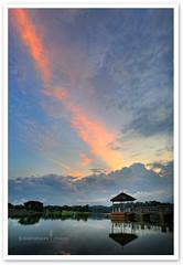 Singapore - Lower Peirce Reservoir Park (TOONMAN_blchin) Tags: singapore wow1 wow2 wow3 wow4 lowerpeircereservoirpark toonman mygearandme mygearandmepremium mygearandmebronze mygearandmesilver mygearandmegold mygearandmeplatinum ringexcellence