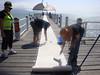 DSC02872 (Perc Tucker Regional Gallery) Tags: install 2011 strandephemera perctuckerregionalgallery