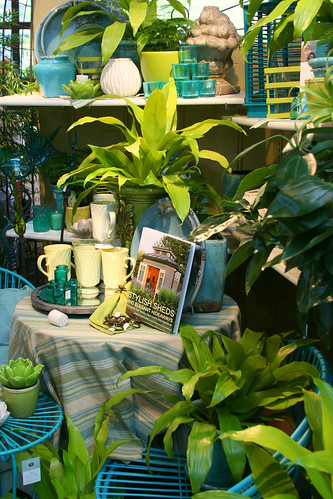 lime and aqua merchandising