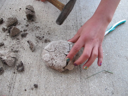 Excavating our fossilized dinosaur eggs #2