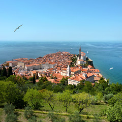The Piran peninsula on the Istrian coast of Slovenia (Bn) Tags: old sea streets heritage architecture square geotagged coast town topf50 mediterranean day gulf cathedral p