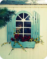 Reflections (Jane_HC) Tags: window rustic shed quaint