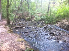 Beech Hollow Creek