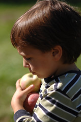 (sam...) Tags: autumn trees summer fall apple fruit kids vermont indian swings late apples agriculture picking orchards shelburne