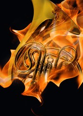 Festival of Horns © ROH 2011