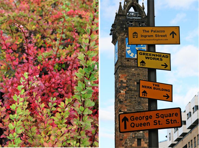 Glasgow7866