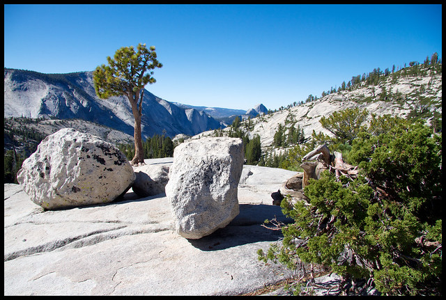 Yosemite rocks and trees 2