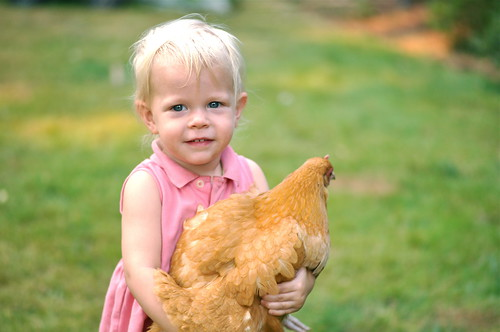 a girl and her chicken, again