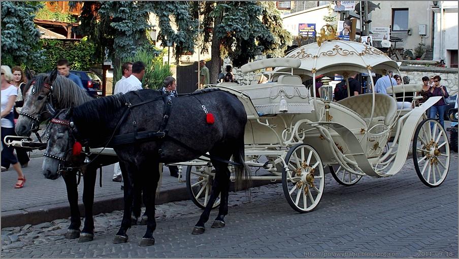 Kazimierz Dolny karoca zaprzężona w kare konie