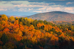 "Vermont Brilliance II • <a style=""font-size:0.8em;"" href=""http://www.flickr.com/photos/55747300@N00/6175422966/"" target=""_blank"">View on Flickr</a>"