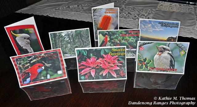 266-365 Christmas Card Collection
