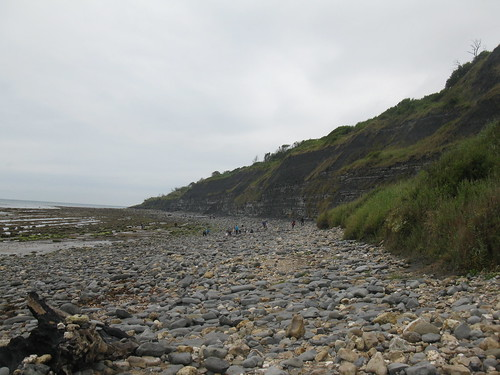Cliffs west of Lyme Regis where Mary Anning collected her fossils