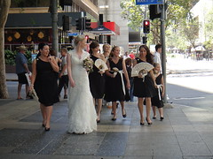 Another day another wedding (sccart) Tags: brisbane brisvegas cityofdreams anotherdayanotherwedding