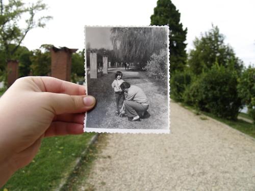 dear photograph (9)