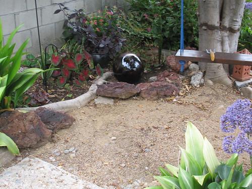 new garden sphere, alternanthera, aspidistras, fuchsia, nandina, caladium