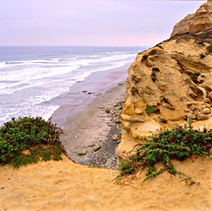 Beach Trail Overlook ~ Torrey Pines State Reserve, CA (Wolverine09J) Tags: california pacificocean environment oceanvistas beachscapes scenicoverlooks naturallymagnificent naturescreations dragondaggeraward ddsnetgroupformyfriends naturesprime blinkagainforinterestingimages torreypinesnaturereserveca