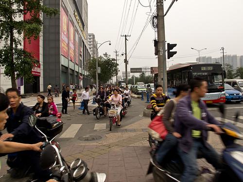 Sichuan Foraging