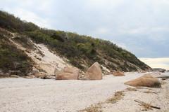 Coastal Bluff and Stony Creek Granite Gneiss Glacial Erratics (sandy richard) Tags: usa newyork unitedstates geology wildwood calverton wildwoodstatepark newyorkstateparks sandyrichard longislandgeology sandrarichard