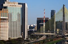 Ponte estaiada (Daniel Cymbalista) Tags: bridge brazil modern skyscraper sopaulo ponte financial moderno metropole berrine estaiada