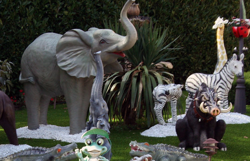 Zoo House (08)