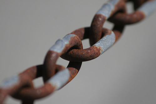 Elevate The Ordinary: link in the chain