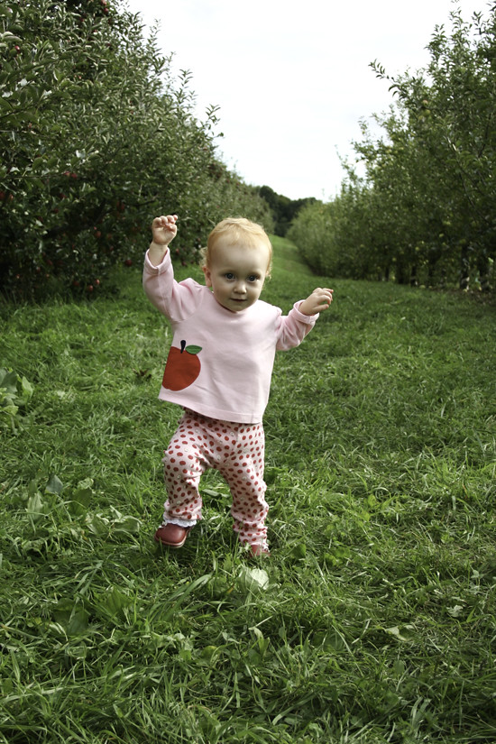 abi apple picking