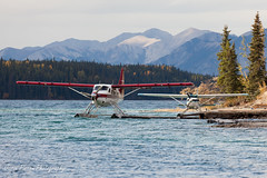 ZDV at Muncho Lake (Jason Pineau) Tags: lake bc britishcolumbia 206 lodge turbo otter seaplane cessna floatplane dehavilland muncho dhc3 airtindi cfzdv liardair