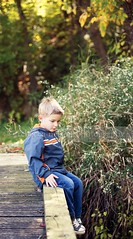 (Rebecca812) Tags: park wood bridge autumn trees boy sunlight cute green fall nature childhood vertical forest fun kid goodness sitting child play looking profile fulllength thoughtful jeans jacket thinking pensive environment casual discovery preserve idyllic lostinthought simplelife blondhair beautyinnature canon5dmarkii rebecca812