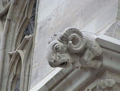 Gargoyle (haberlea) Tags: france church stone architecture cathedral gothic medieval gargoyle amiens middleages picardy amienscathedral