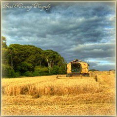 A Race Against Time (Frank Kavanagh Photography) Tags: trees kilkenny ireland summer sky storm colour nature leaves barley clouds landscape farm wheat seasonal harvest straw eire hills fields hay emeraldisle hdr irlanda farmmachinery hdrphotography irishphotographers kilkennyphotographers kilkennyphotographicsociety mygearandme frankkavanaghphotography