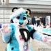 anthrocon_105