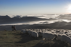 Amanecer en Gorbea (Jabi Artaraz) Tags: light naturaleza mist sol nature animal fog fauna sunrise amazing spain europa europe sheep gorgeous sony natur natura amanecer zb lovely pastor bizkaia niebla euskalherria euskadi basquecountry spanien baskenland 1000views araba paysbasque biskaia bruma gorbea gorbeia animaliak ovejas rebao lainoa egunsentia beautifulearth anboto ardiak digitalcameraclub supershot 100faves pastoreo 1000vistas biskaya euskoflickr fineartphotos fantasticnature artzaina justclouds abigfave superaplus aplusphoto flickrbest impressedbeauy diamondclassphotographer flickrdiamond artaldea excapture jartaraz alfa350 panoramafotogrfico arditxakurra blinkagain flickrbronzetrophygroup bestofblinkwinners blinksuperstars