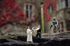 in which the rings are exchanged (manyfires) Tags: ireland wedding castle fun groom bride engagement bokeh humor marriage rings figurines princessleia actionfigures bobafett hansolo