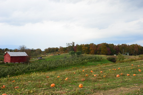 october 2011 297