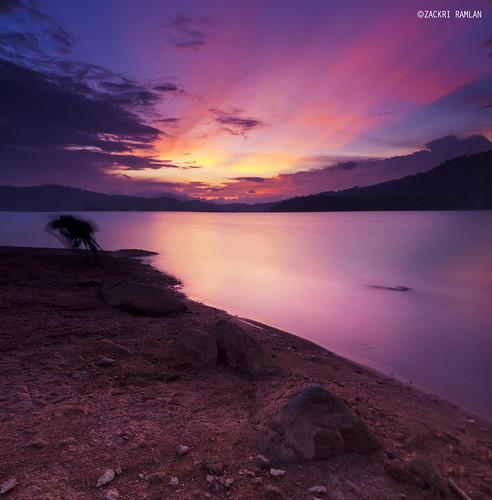 Kenyir Reddy by Zackri Zim'S