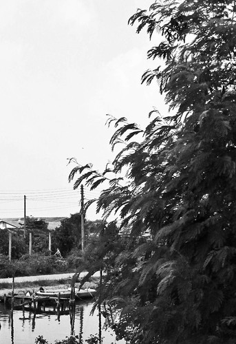IMG_6596 Songkhla,宋卡