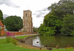 Old Hunstanton ([Duncan]) Tags: church duck pond village norfolk mallard stmary englishvillage oldhunstanton stmarythevirgin villagepond