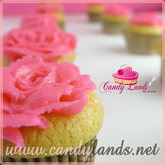 (Candy lands  ) Tags: