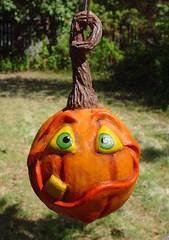 ToofyJack (tamaradozier) Tags: original orange holiday halloween pumpkin funny handmade ooak humor ornament etsy whimsical sculpted dozier paperclay tdozier tamaradozier