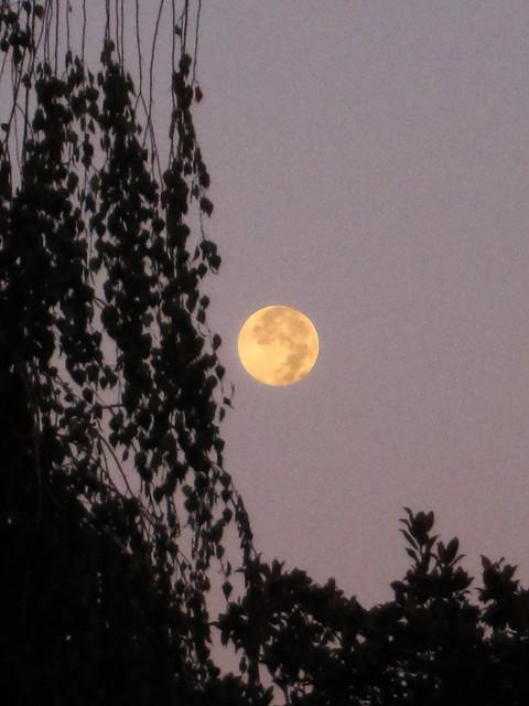 Full moon over ESRIN
