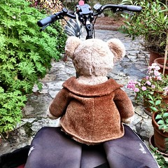 Little Bear sat already outside waiting on the bike. But..