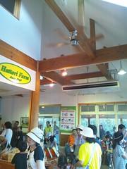 アイスクリーム工房カサリンガの店内の写真