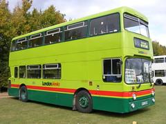 Leyland Atlantean/Park Royal: AN264 KPJ264W  Showbus 2011 (emdjt42) Tags: duxford leyland parkroyal iwm showbus atlantean iwmduxford an264 kpj264w showbus2011