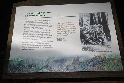 The United Nations at Muir Woods, San Francisco