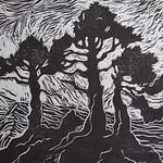 "<b>Three Trees</b><br/> Gilbertson (LC '04) (Linoleum block print, 2008)<a href=""http://farm7.static.flickr.com/6152/6173093791_828766d1eb_o.jpg"" title=""High res"">∝</a>"