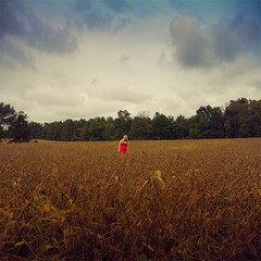 365/252 - The Meadow (RachelMarieSmith) Tags: fall field fashion clouds forest canon landscape photography modeling farm hipster meadow pasture indie land 365 grassland paddock project365 pastureland 365project christinewatson rachelmariesmith