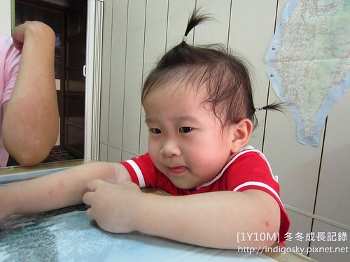 1Y10M-冬冬成長記錄-IMG_1332