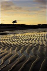 abersoch beach, wales (deejuk) Tags: sunset sea sky tree beach water wales clouds sand nikon dusk ripple abersoch d40